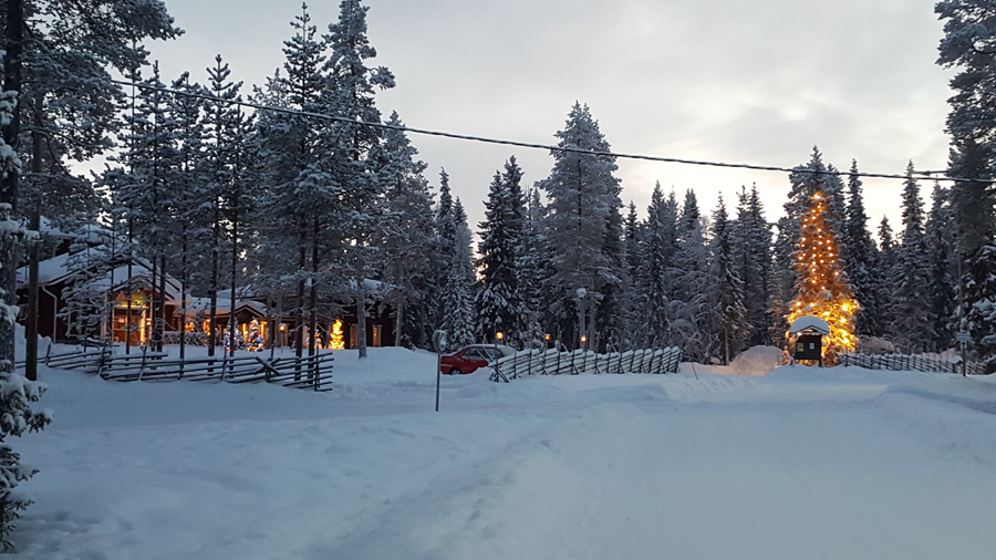 images_articles_2016_lapland_walk-in-the
